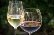 'Brexit forces up average price of wine to all-time high', study says