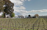 Constellation Brands invests in New Zealand winery expansion