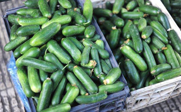 Vegetable shortage 'cost UK retailers £8m' in January alone
