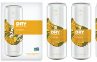 Dry Soda unveils 'bold and spicy' ginger flavour of Dry Sparkling